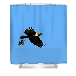 David And Goliath Shower Curtain by Mike  Dawson