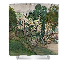 David's House Shower Curtain