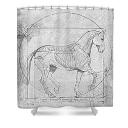 Da Vinci Horse Piaffe Grayscale Shower Curtain by Catherine Twomey