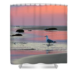 Shower Curtain featuring the photograph Dawn In Pink by Dianne Cowen