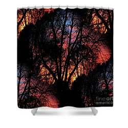 Sunrise - Dawn's Early Light Shower Curtain by Luther Fine Art