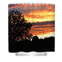 Day Is Done Shower Curtain by Luther   Fine Art