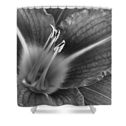 Day Lily In Black And White Shower Curtain