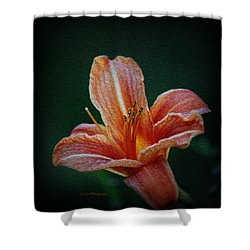 Day Lily Rapture Shower Curtain
