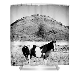 Day Moon And Paint Shower Curtain