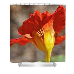 Day Time Shower Curtain by Larry Bishop