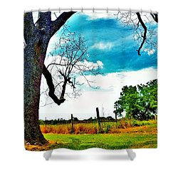Shower Curtain featuring the photograph Daydreamer by Faith Williams