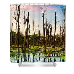 Daylight In The Swamp Shower Curtain by Lars Lentz