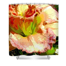 Daylily 1 Shower Curtain by Sally Simon