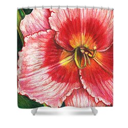 Daylily Delight Shower Curtain by Shana Rowe Jackson