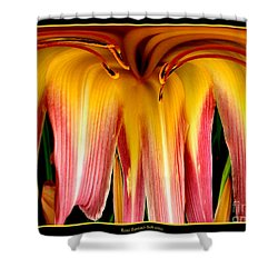 Daylily Flower Abstract 3 Shower Curtain by Rose Santuci-Sofranko