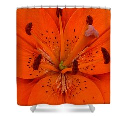 Daylily Heart Shower Curtain