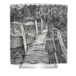 Days Gone By Shower Curtain by Janet Felts
