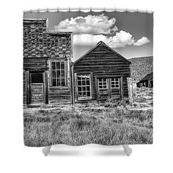 Days Of Glory Gone Shower Curtain by Sandra Bronstein
