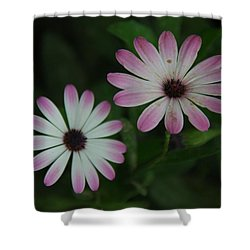 Shower Curtain featuring the photograph Dbg 041012-0110 by Tam Ryan