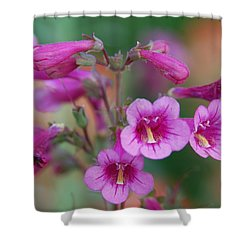Shower Curtain featuring the photograph Pink Flowers by Tam Ryan