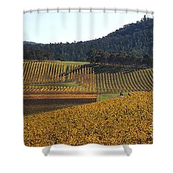 golden vines-Victoria-Australia Shower Curtain by Joy Watson
