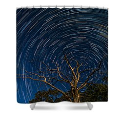 Dead Oak With Star Trails Shower Curtain by Paul Freidlund