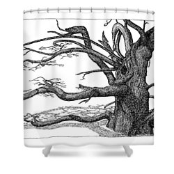 Dead Tree Shower Curtain