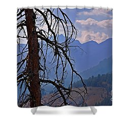 Shower Curtain featuring the photograph Dead Tree Mountains Landscape by Valerie Garner