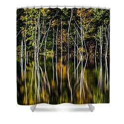 Shower Curtain featuring the photograph Deadwood by Mihai Andritoiu