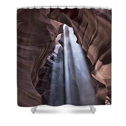 Death By Chocolate Antelope Shower Curtain