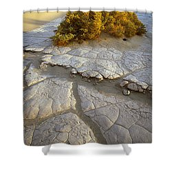 Death Valley Mudflat Shower Curtain by Inge Johnsson