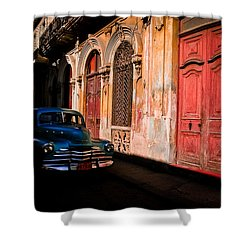 Decaying Beauty  Shower Curtain by Cecil K Brissette