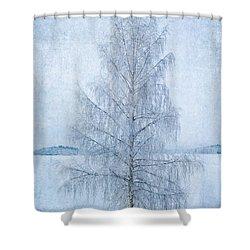 December Birch Shower Curtain