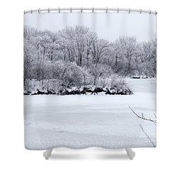 December Lake Shower Curtain by Debbie Hart