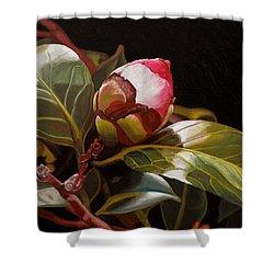December Rose Shower Curtain