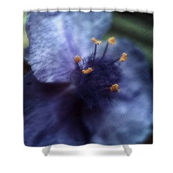 Shower Curtain featuring the photograph Deep Blue by Louise Kumpf