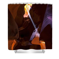 Deep In Antelope Shower Curtain by Chad Dutson