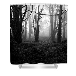 Deep In The Florest Shower Curtain by Jorge Maia