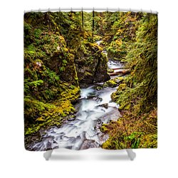 Deep In The Forest Shower Curtain by Ken Stanback