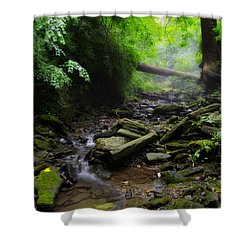 Deep In The Woods Shower Curtain by Bill Cannon