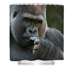 Deep In Thought Shower Curtain by Judy Whitton