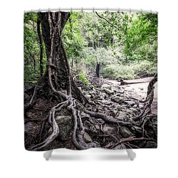 Deep Rooted Shower Curtain