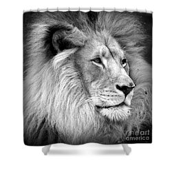 Deep Thought Shower Curtain