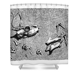 Deer Bones Shower Curtain