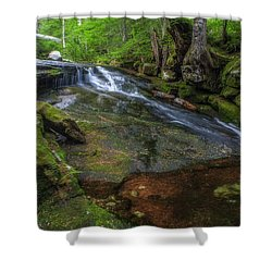 Deer Creek Shower Curtain