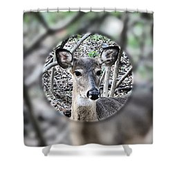 Deer Hunter's View Shower Curtain