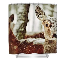 Deer In The Snow Shower Curtain by Nick  Biemans