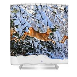 Deer Jump Shower Curtain
