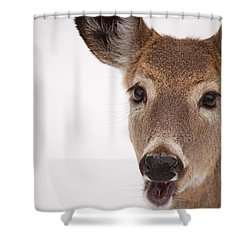 Deer Talk Shower Curtain by Karol Livote