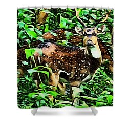 Deer's Green Day Shower Curtain