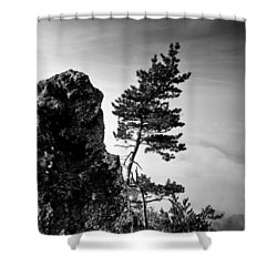 Defiant Shower Curtain by Davorin Mance