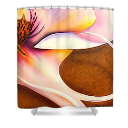 Defined Fine Lines Shower Curtain by Darren Robinson