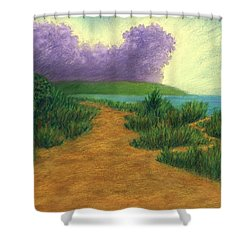 Del Mar Trails 03 Shower Curtain