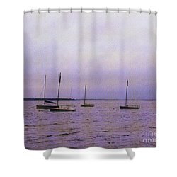 Delaware Harbor Shower Curtain